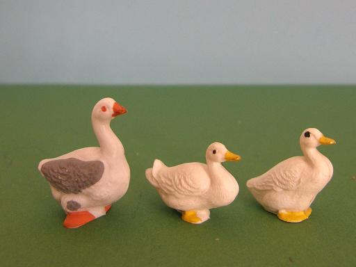 Britains Waterfowl